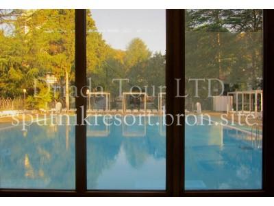 Отель  «ALEAN FAMILY RESORT & SPA SPUTNIK / Спутник Сочи»   - бассейн